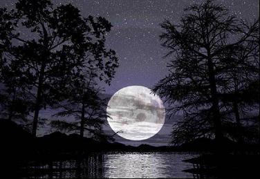 20090908182124-luna-noche.jpg